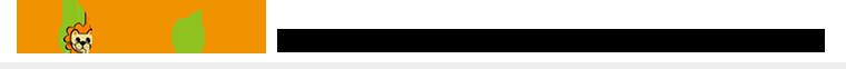 """LIONHOMEは""""イオニアミストPRO""""認定取り扱い施工店です"""